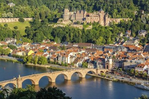 View on Heidelberg image