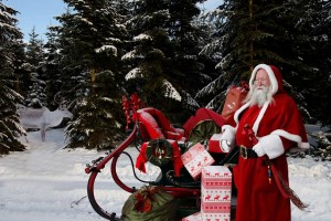 Santa Claus with sleigh and reindeer in the woods