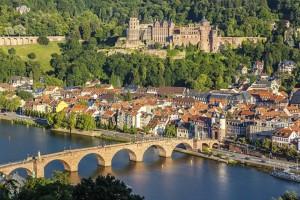 View on Heidelberg image