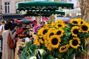 Explore the market scene in France with AESU!