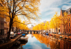 In Amsterdam, the best way to view the majestic fall leaves is from the comfort of a canal cruise.