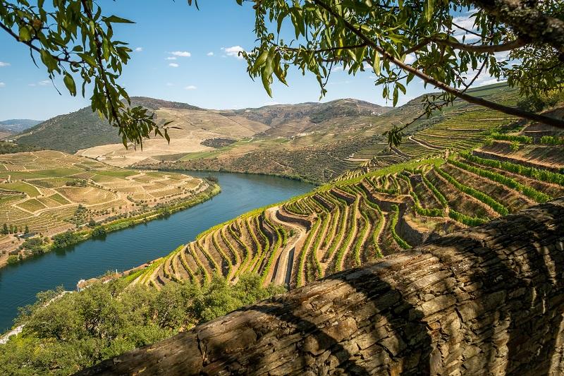Portugal's Douro Valley